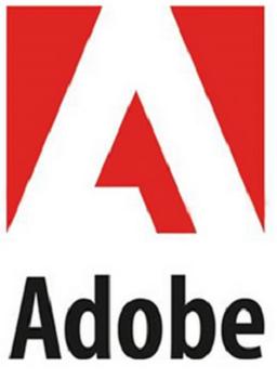imagen Adobe Flash CS4